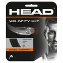 Racordaj Head Velocity